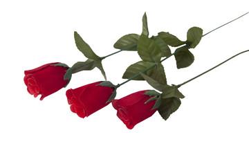 red rose freigestellt bouquet de rouges