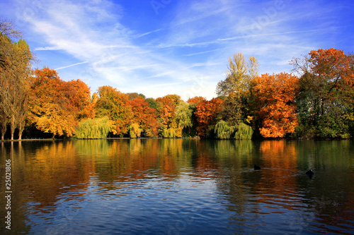 Fototapeten,herbst,herbst,münchen,park
