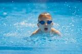 Fototapety schwimmer