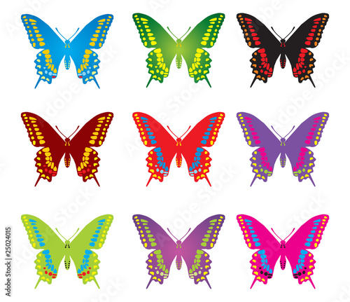 Colorful butterflyes