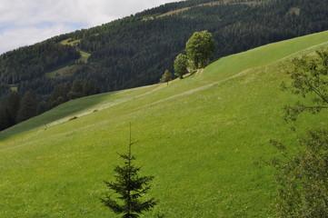 Panorama austriaco