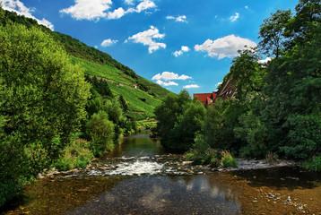 Rivière Vosgienne à Thann , Alsace (Fr)