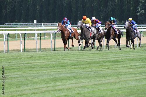 Papiers peints Equestre courses chevaux à deauville