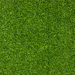 Artificial Grass Field Top View Texture - 25045043