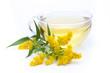 Kanadische Goldrute (Solidago canadensis) Tee mit Blüte