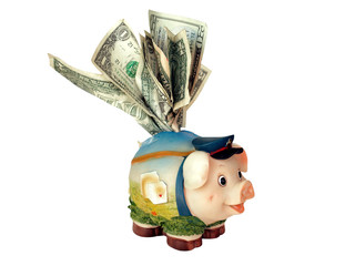 overstuffed funny piggy bank with dollar banknotes
