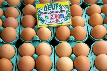 Boxes of Eggs