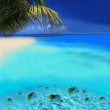 Fototapeta australia - tło - Wyspa