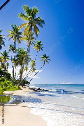 Aluminium Caraïben Northern coast of Trinidad, Caribbean