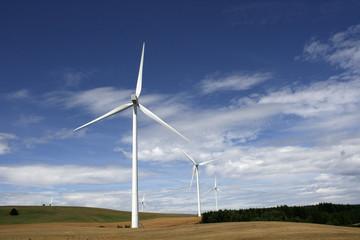 Paysage d'éolienne