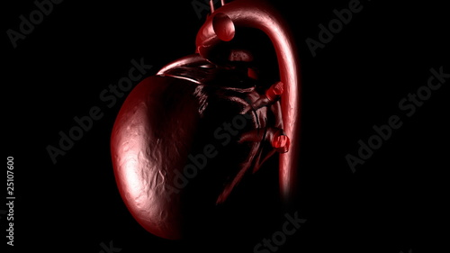 close-up of a 3d human heart beating
