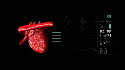 Human heart beating in high definition