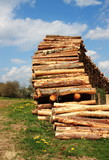 Sustainable Resources - Lumber Industry poster