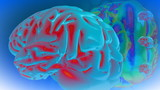 3d animated multicolor brain