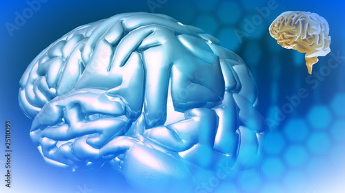 3d animated brain in High definition against a blue screen