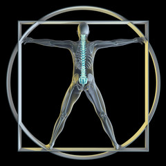 Vatruvian Man & Spine