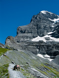 Eiger trail in Switzerland
