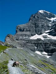 Eiger trail in Switzerland