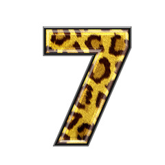 3d digit with panther skin texture - 7