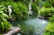 Tropical zen garden