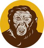 Prehistoric man head facing front poster