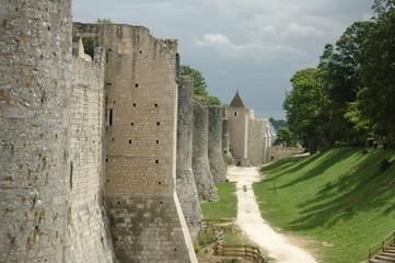 remparts de provins medieval en seine et marne