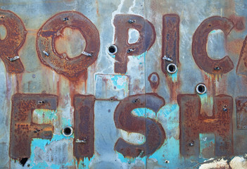 remnants of old neon sign in scrapyard