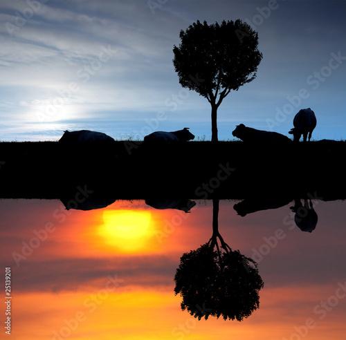 Aube crepuscule campagne matin soir lev soleil couch ciel va photo libre de droits sur la - A quel heure se couche le soleil ...