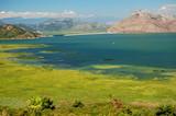 Landscape of Lake Skadarsko in Montenegro
