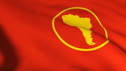 3d South America Union flag