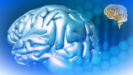 3d Abstract Brains in high definition against blue background