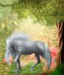pferd im märchenwald