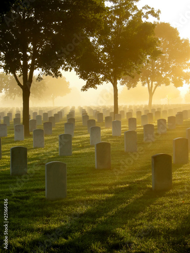 Cemetery in the Fog - 25166436