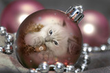 Pink Bauble Kitten