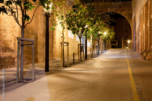 Footpath at night 25179664