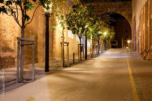 Footpath at night
