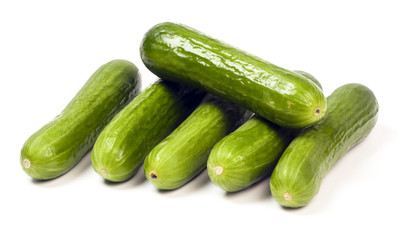 Persian mini cucumbers seedless gourmet food