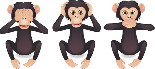 See no evil, hear no evil, speak no evil