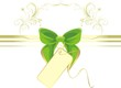 Green bow with card and ornament. Decorative pattern for title