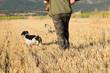 Cazador con sus perros