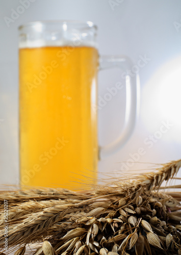 Barley and beer