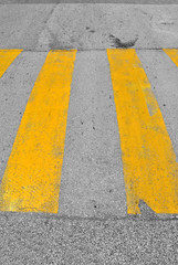 yellow line on black asphalt