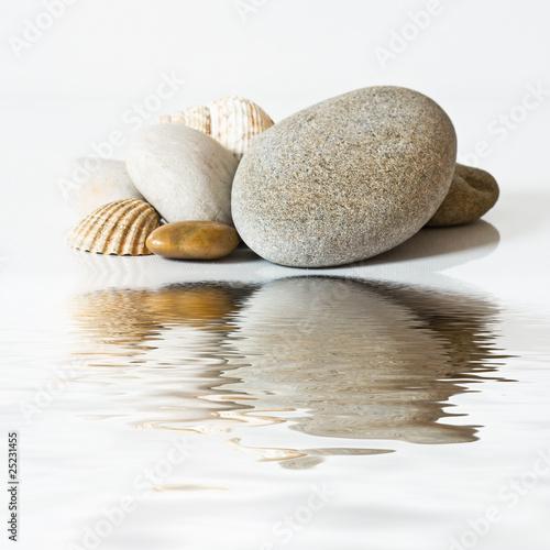 galets et coquillages sur l'eau