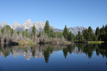 Grand Teton Mountain Range reflecting in lake
