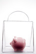Piggy Bank In A Bag