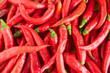 chili pepper..