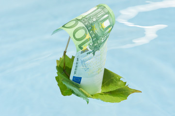 Money sail boat close-up. Green leaf with euro sail floating