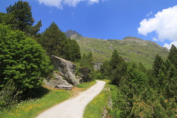 Trekking in Engadina