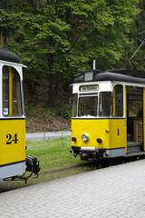 Kirnitzschtalbahn (Bad Schandau)