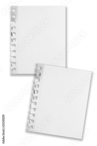 Two overlapping blank paper sheets isolated with shadows